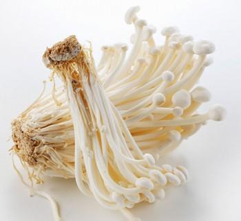 Enoki-blanc