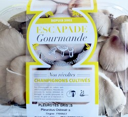 Cultives_Barquettes_Escapade-Gourmande