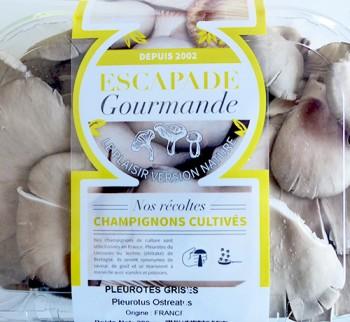 Cultives_Barquettes_Escapade-Gourmande