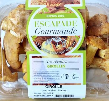 Girolles_Barquettes_Escapade-Gourmande